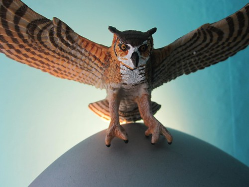 HERE IS AN OWL by Rakka
