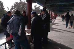 Locals playing Chinese Chess at Temple of Heavenly