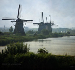 early morning in Kinderdijk