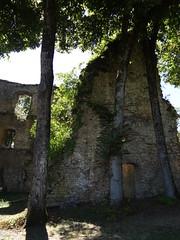 Chateau d'Arlay - Arlay