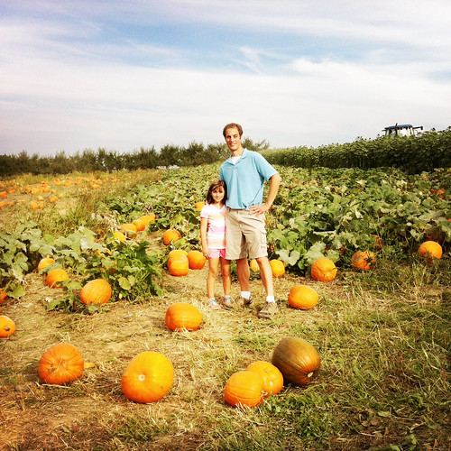 In the pumpkin patch.
