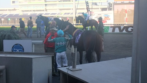 Back Away Wins Again--Takes Meadowlands Feature