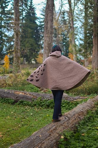 <p>Cameron Park, Burnaby, British Columbia, Canada<br /> Nikon D5100, 35 mm f/1.8<br /> October 25, 2013</p>