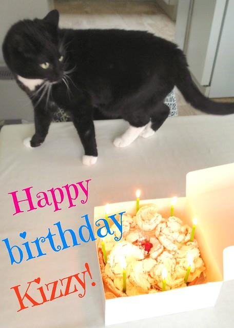 猫's Birthday