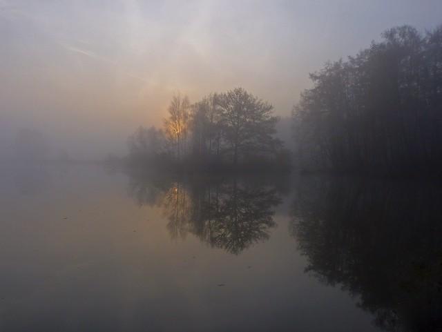 Foggy Holland