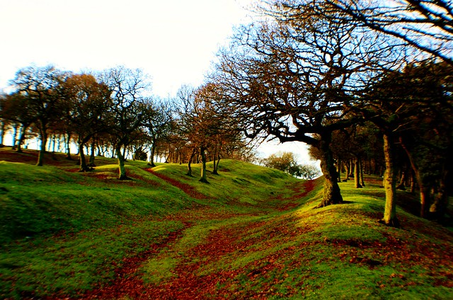 Antonine Wall, Seabags Wood, Scotland