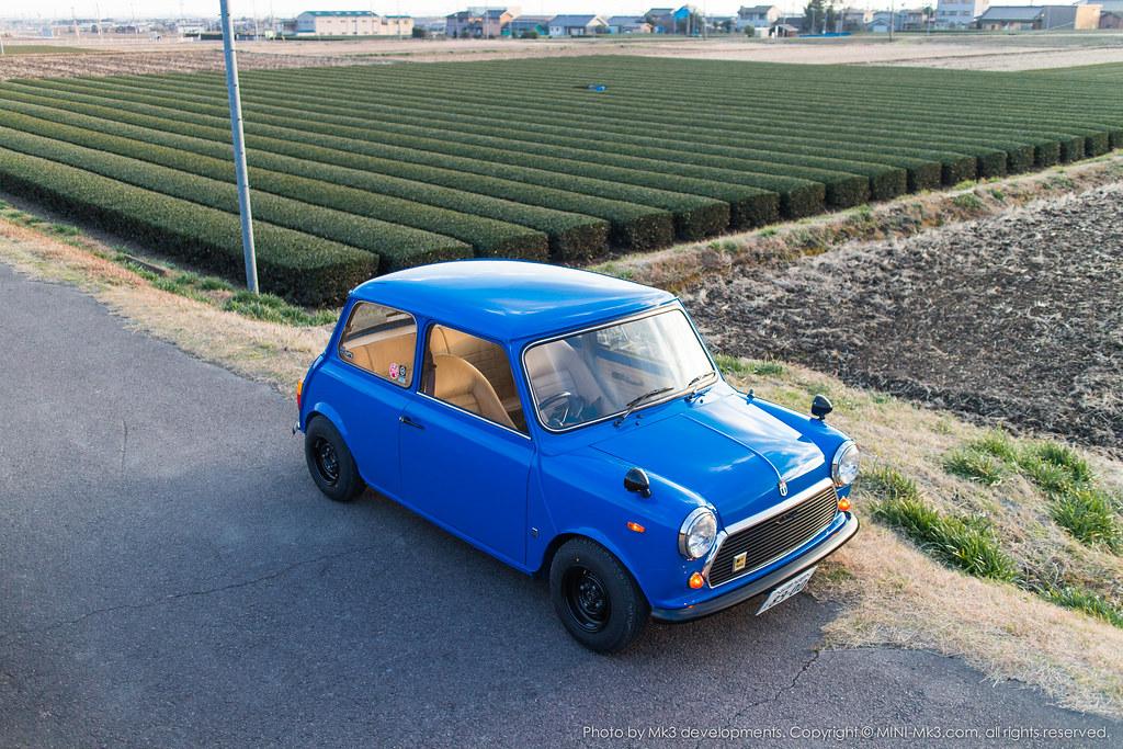 bluemini-12