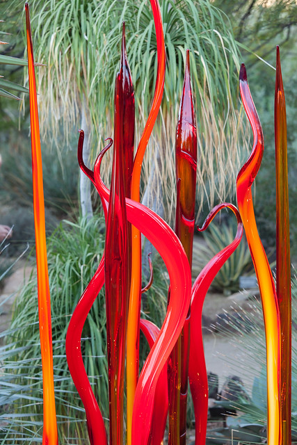 Chihuly Cattails