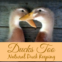 naturalducks200