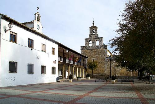 0017-Renera-Guadalajara