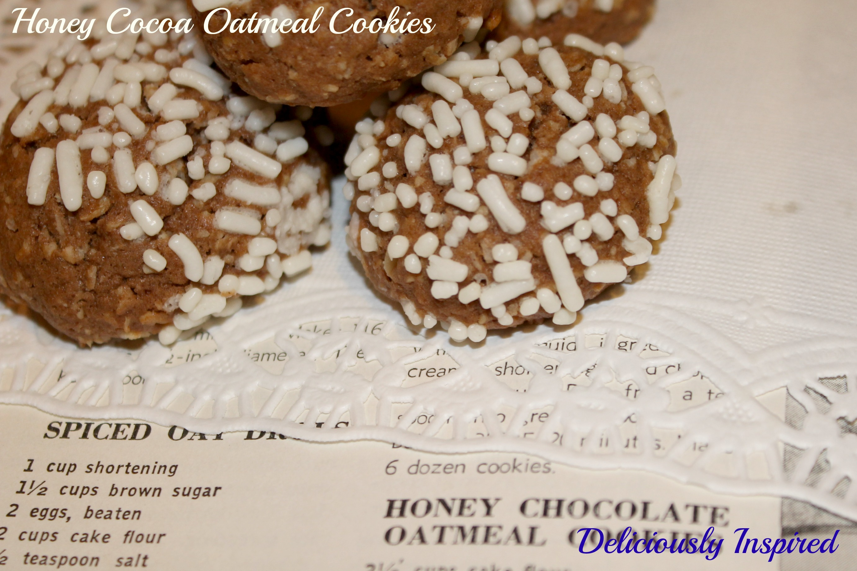 Honey Cocoa Oatmeal Cookies - recipe and cookbook
