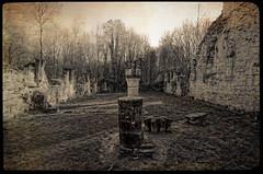 Aisne - Abbaye de Vauclair
