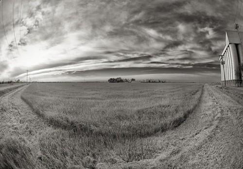 blackandwhite field clouds texas katy fisheye katytexas grassfield brookshire ricesilo wallercounty brookshiretexas wallercountytexas