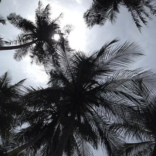 Mentari sembunyi #sumurtiga #beach #pantai #aceh #acehtrip #sabang #indonesia