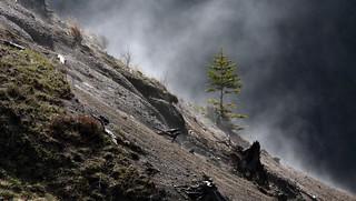 Mount St. Helens National Park