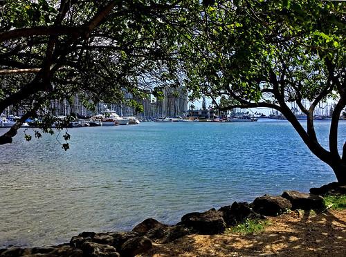 hawaii oahu alamoanaarea alamoanabeachpark alamoanapark alawaismallboatharbor waikikiyachtclub ocean pacificocean frame honolulu ipad ipadair