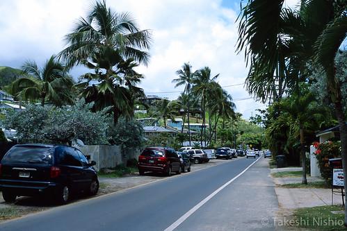 ビーチ沿いの道路は車がいっぱい / Cars parking a lot at the road besides beach