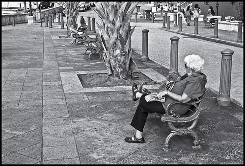 Señora y Banco (Lady & Bench)