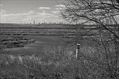 Manhattan Skyline In The Far Distance