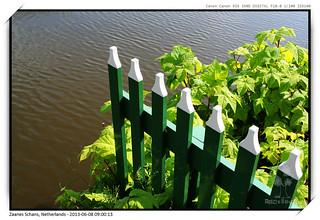 Amsterdam_20130608_114_Canon EOS 350D DIGITAL