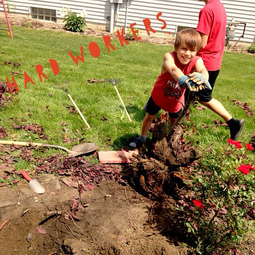 We even put the boys to work! #childlabor