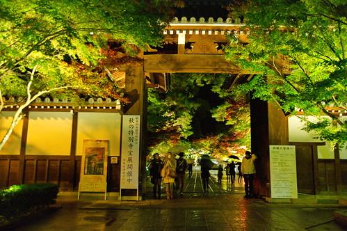 【写真】2012 紅葉 : 永観堂/2020-05-30/IMGP6288
