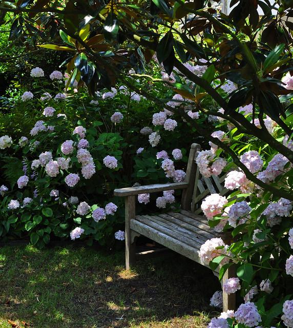 Goodman Garden (3)