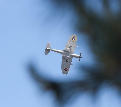 Spitfire through the tress
