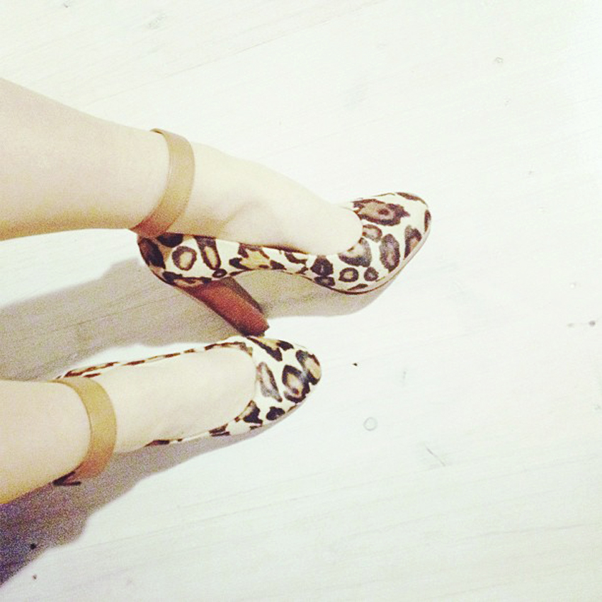 leopard shoes meow