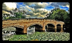 Bridge over the River Soar,Abbey Park,Leicester #Leicester#camera+ by davidearlgray