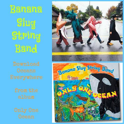 Banana Slug String Band