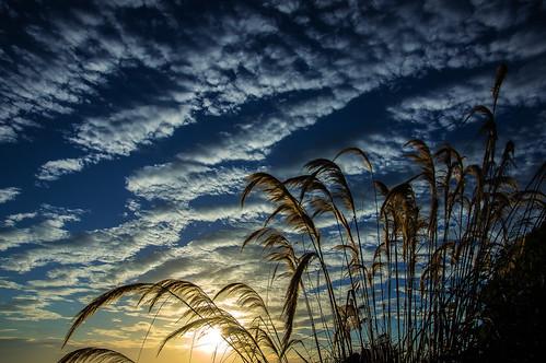 sunset sky clouds skies