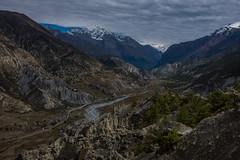 Round Annapurna 13