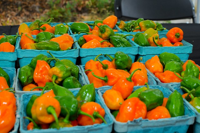 The Chile Pepper Farm Stand. Photo by Mike Ratliff.