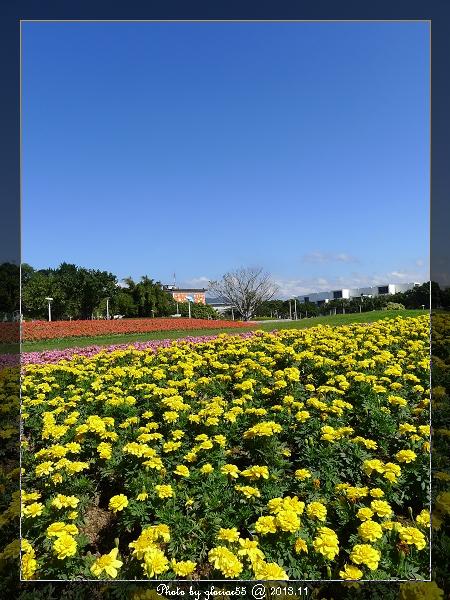 2013萬花節-1a
