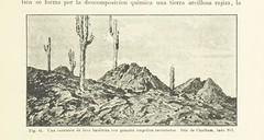 """British Library digitised image from page 511 of """"Geografía y geología del Ecuador ... Con ... ilustraciones, etc"""""""
