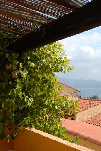 FCSconseil1 posted a photo:Terrasse studio vue mer