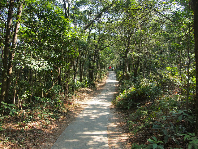 Wisdom Path on Lantau Island