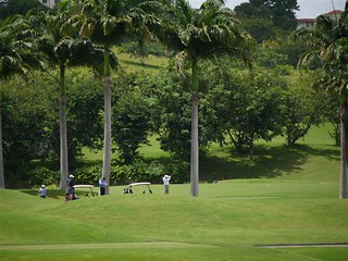 Golf course - Royal Westmoreland estate, Barbados