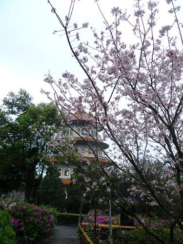 20140309-台北天元宮 (43)