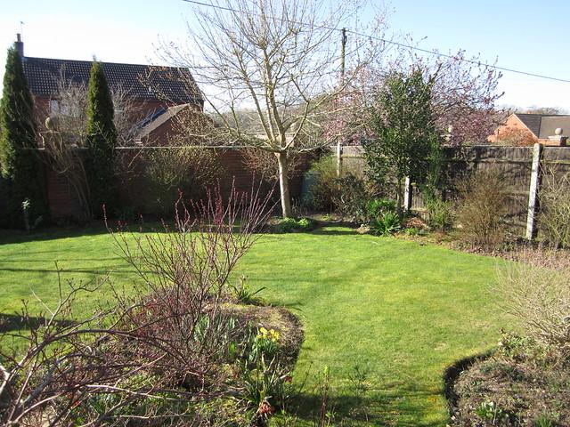 spring garden March 2014 (2)