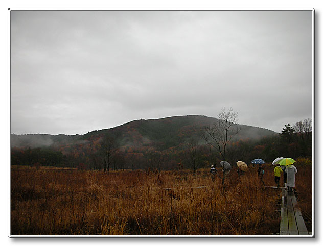 雨が降る霧ヶ谷湿原を歩く.煙る山々は,晴れとは違う美しさを感じた.