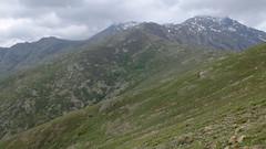 Sur la crête après Bocca di Serra Piana, tournés vers le Capu Biancu