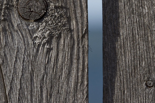macromondays thespaceinbetween macro water sea ocean wood fence slats panel panelling knot grey blue vertical