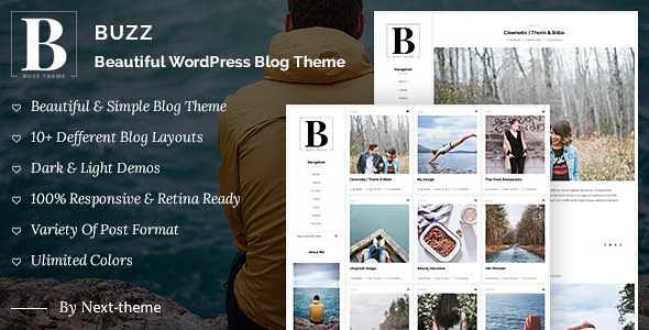 Buzz WordPress Theme free download