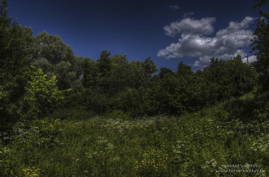 Summer pastoral #2