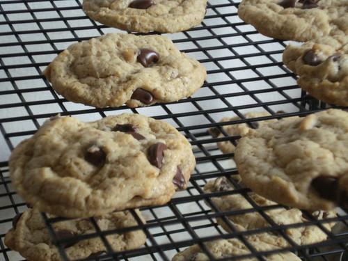 CookiesCoolingCloseup