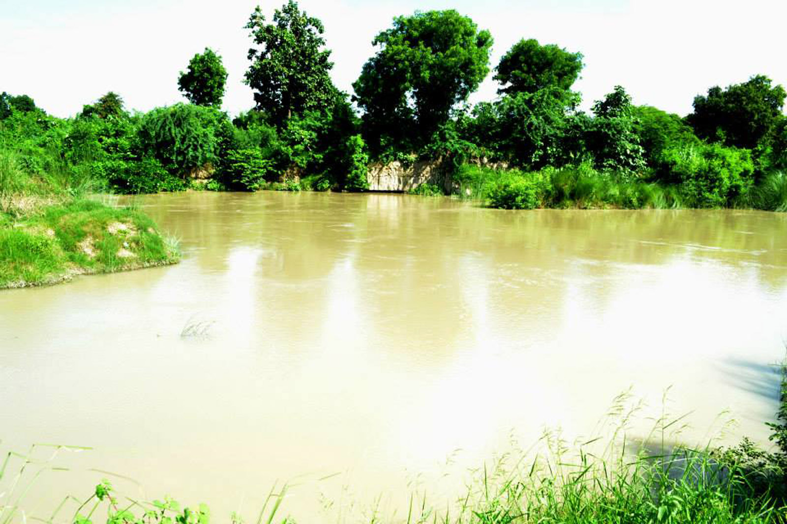 बकुलाही नदी
