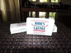 DIY Liquid Castile Soap Wonderful Backdoor Survival