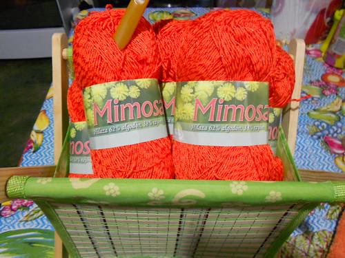 Hilaza Mimosa